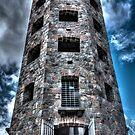 Enger Tower by Sharlene Rens