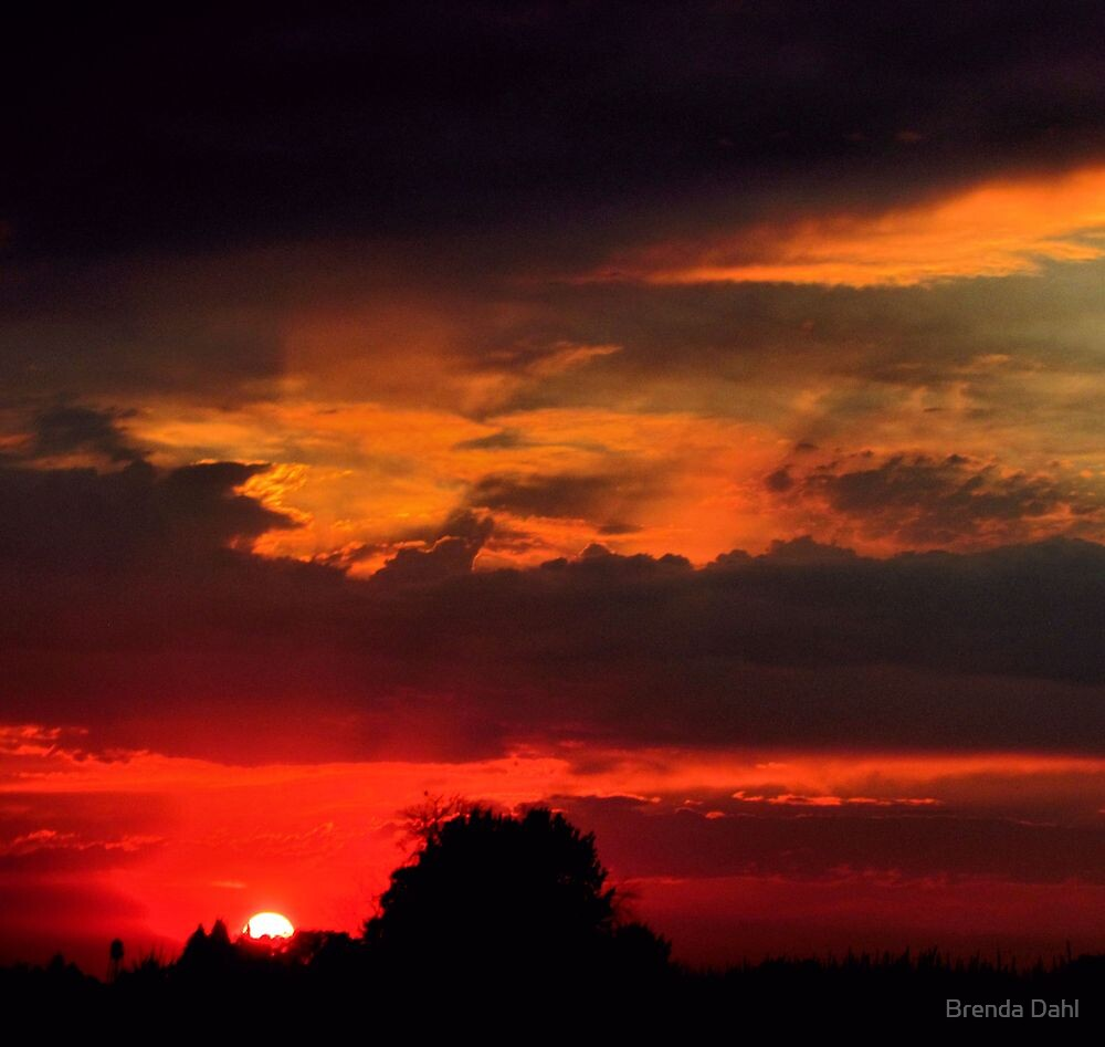 Brilliant Sunset Hues by Brenda Dahl