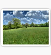 Appalachian Green Sticker