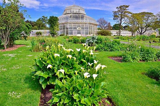 Botanical House & Gardens by Martina Fagan