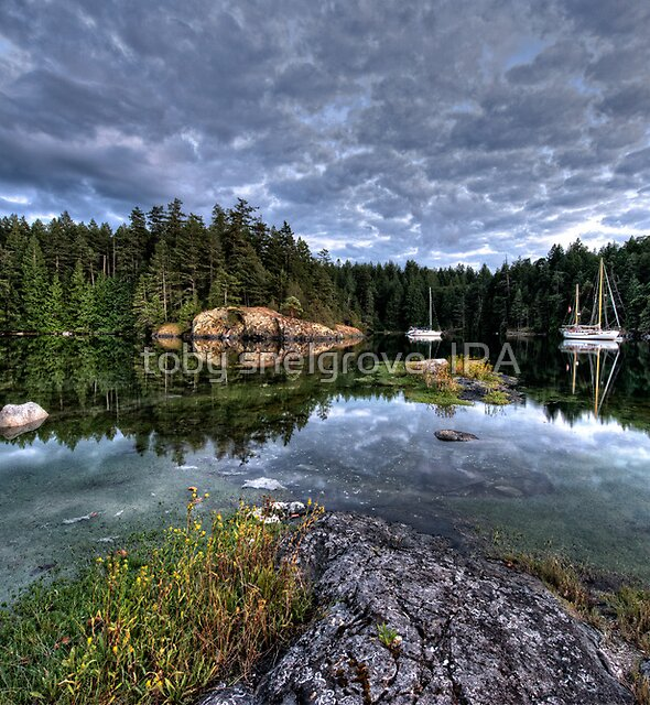 Smuggler Cove, Pender Harbour, BC by toby snelgrove  IPA