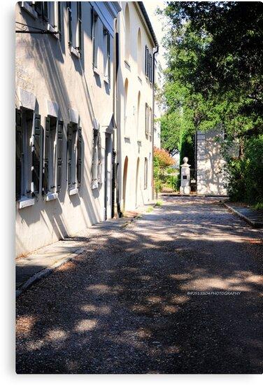 Historic Charleston SC IV by PJS15204