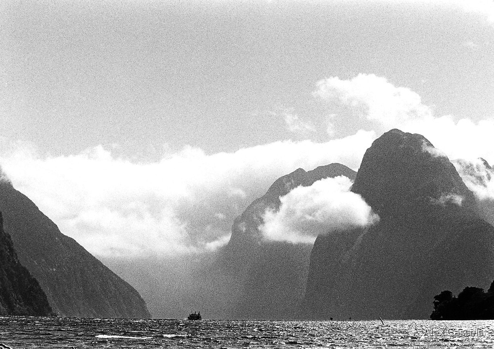 Approaching storm in Milford Sound by Alex Cassels