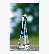 Potion Crafting Photographic Print