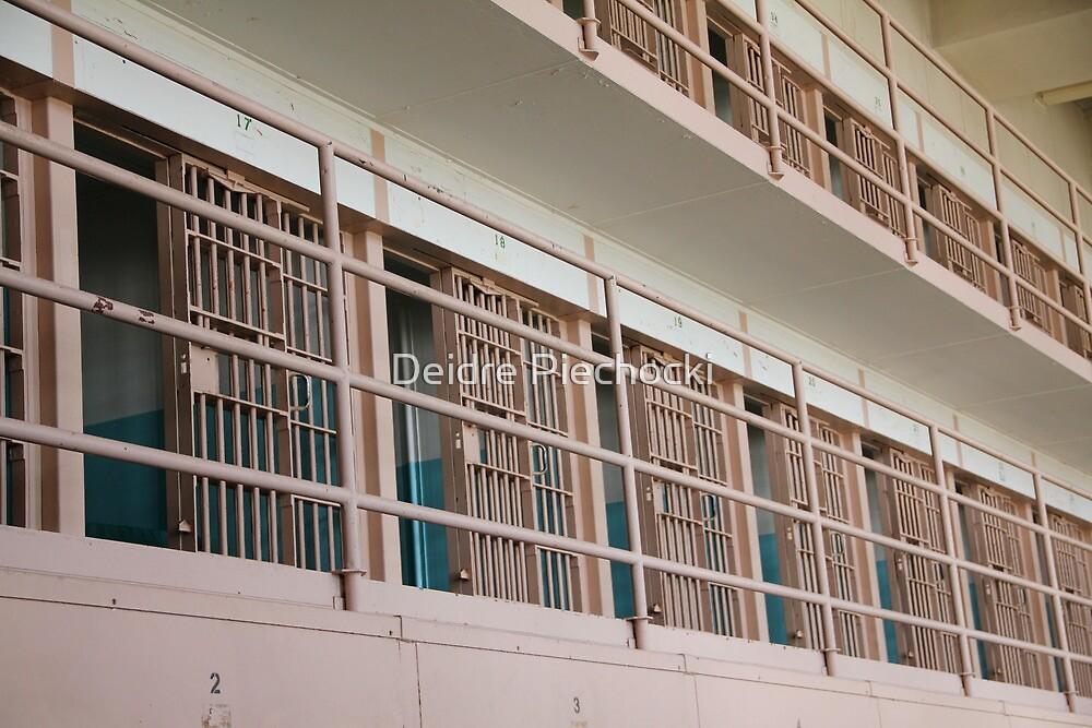 Cages by Deidre Piechocki