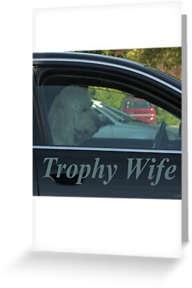 Trophy Wife by Thomas Murphy