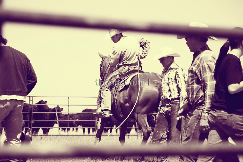 In the Branding Pen by thesdcowgirl