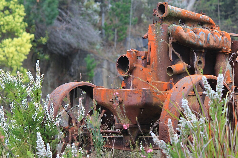rusty worker resting in natural beauty by gaylene