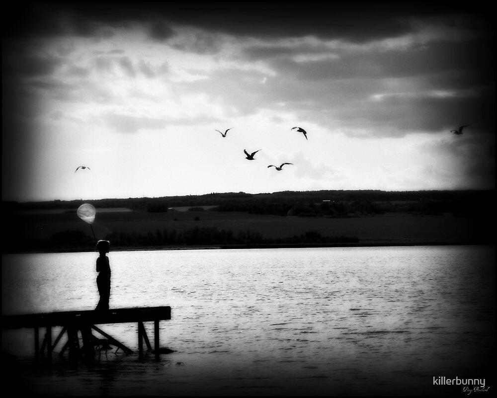 The Dock by killerbunny