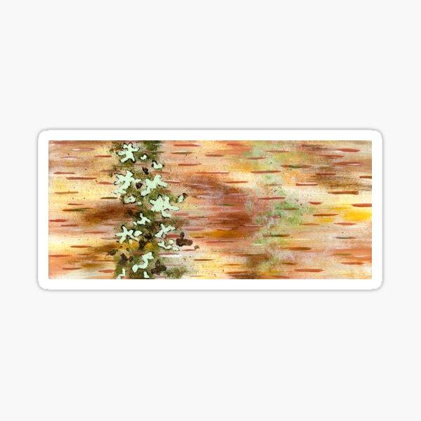 Northern Birch Bark Sticker