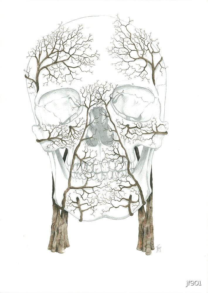 Winter Jacaranda Skull by jf901