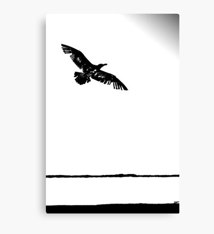 flying into the unknown Canvas Print