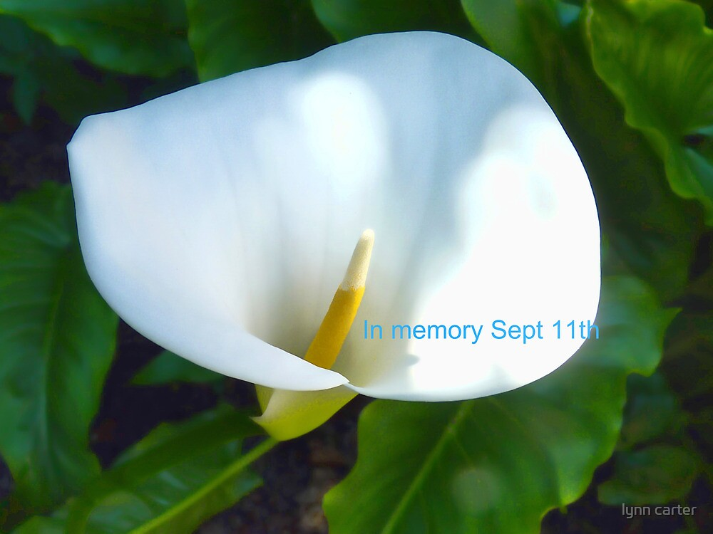 In Memory Of The Tragedy September 11th 2001 by lynn carter