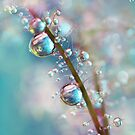 Rainbow Blue Smokey Drops by Sharon Johnstone