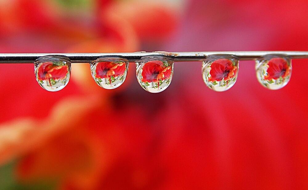 Droplets by mandhara1992