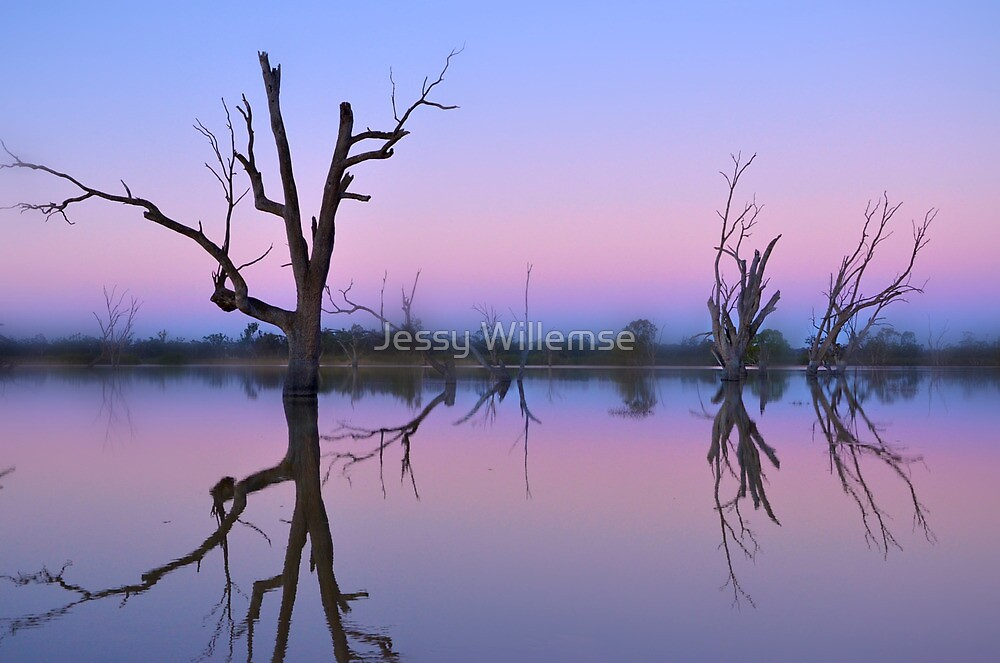 Pink lagoon by Jessy Willemse