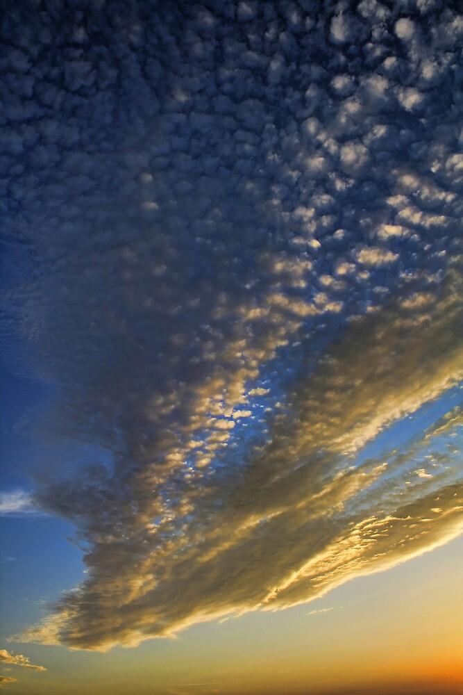 Cloud 20120805-39 by Carolyn  Fletcher