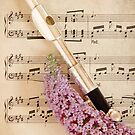 The Music of Romance by Tracy Friesen