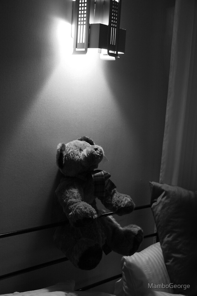 The Bear that saw the Light by MamboGeorge