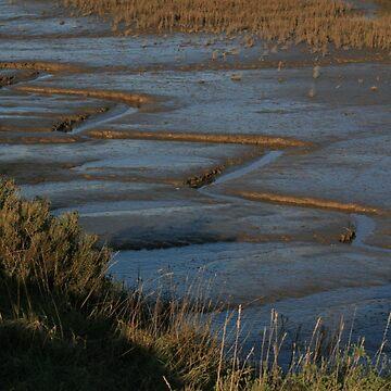 Thornham Marsh by MamboGeorge
