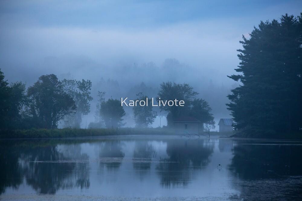 Peaceful Blue by Karol Livote