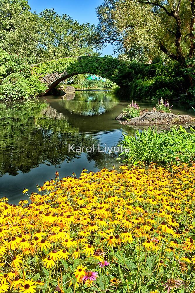 The Pond by Karol Livote