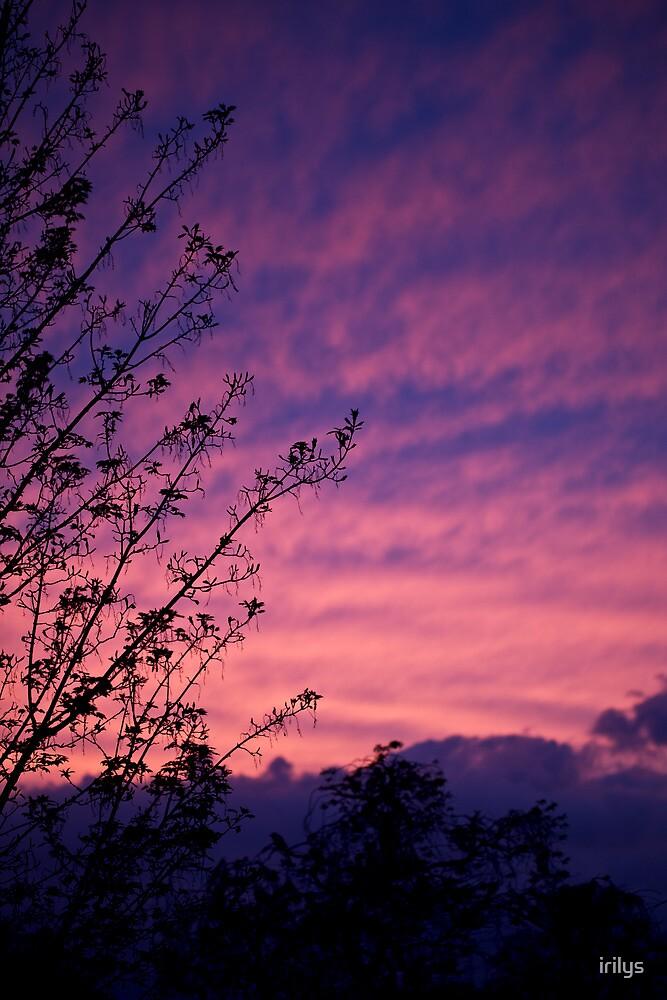 Kentish sky by irilys