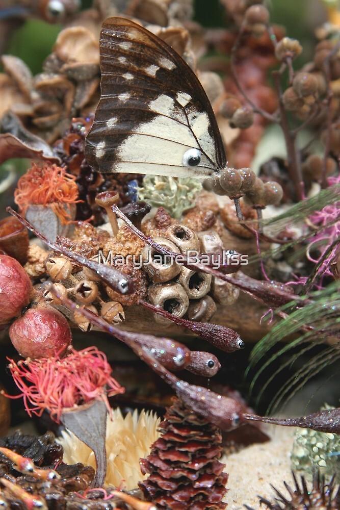 The Butterfly Fish by MaryJaneBayliss