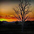 Upper Hunter Sunset by Kym Howard