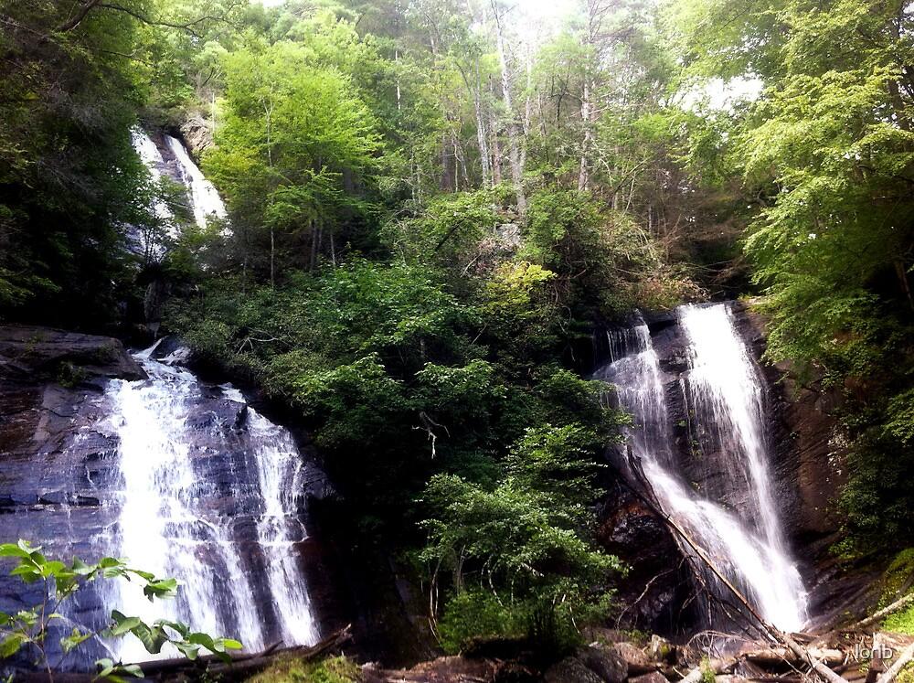 Twin Falls by lorib