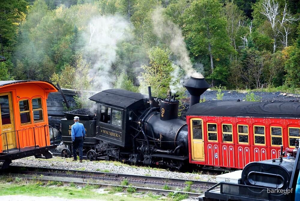Train Wreck by barkeypf