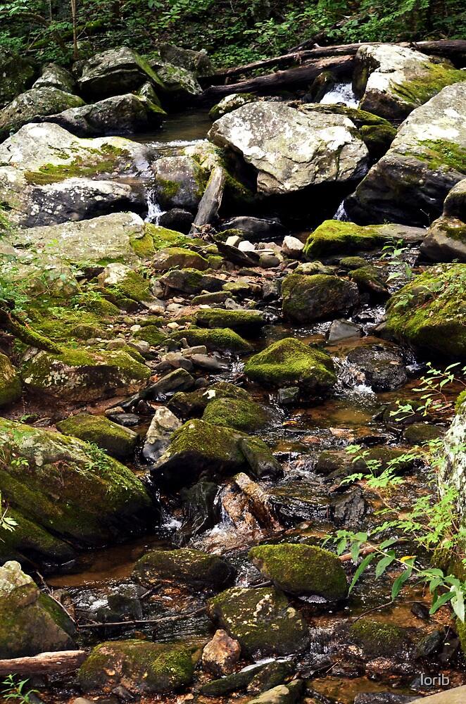Stream by lorib