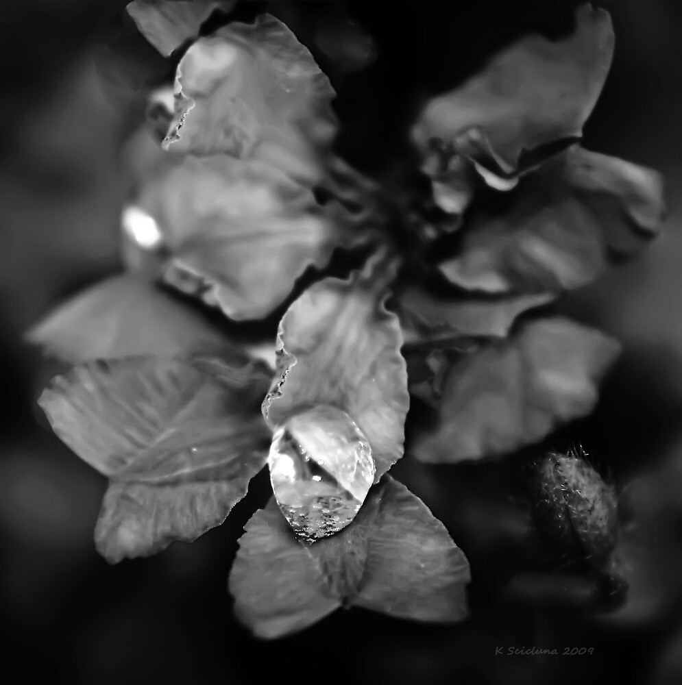 Untitled by bluetaipan