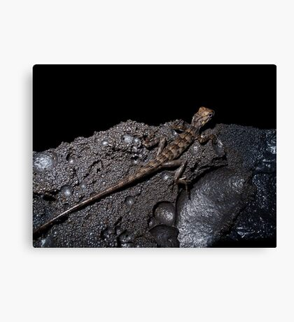 Life in the lava tunnel Canvas Print