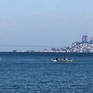 Alcatraz and San Francisco by Igor Pozdnyakov