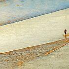 "Shore Surfing, skim surfing on the shallow waves on the beach at ""Avila Beach"" California by Eyal Nahmias"