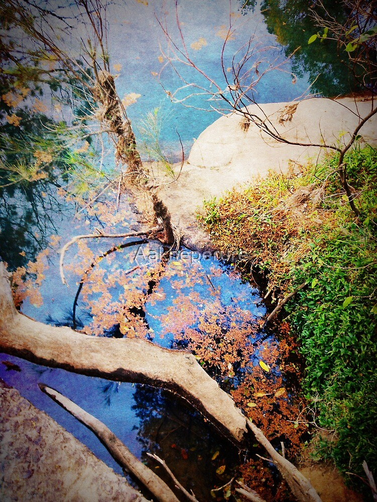 iPhoneography: Nature's palette by Aakheperure