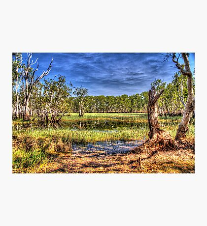 """Billabong at Kakadu"" Photographic Print"