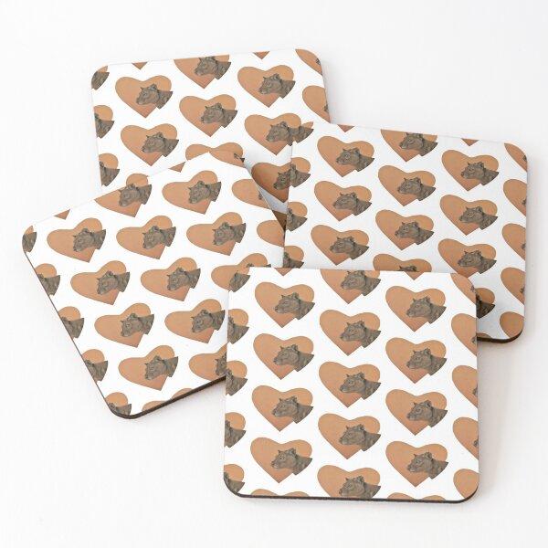 Fossa Coasters (Set of 4)