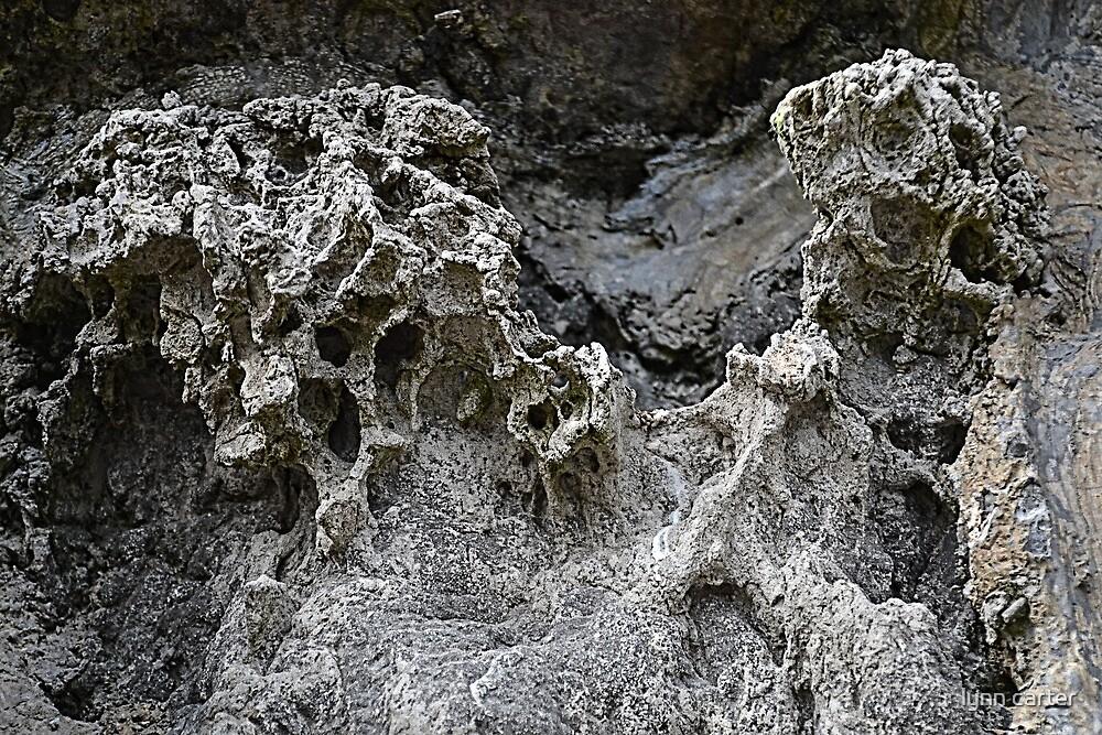 Rock Face At Lyme Dorset UK by lynn carter
