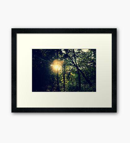 fairy ground III Framed Print