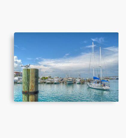 Seagull watching a boat coming back at the marina in Nassau, The Bahamas Canvas Print