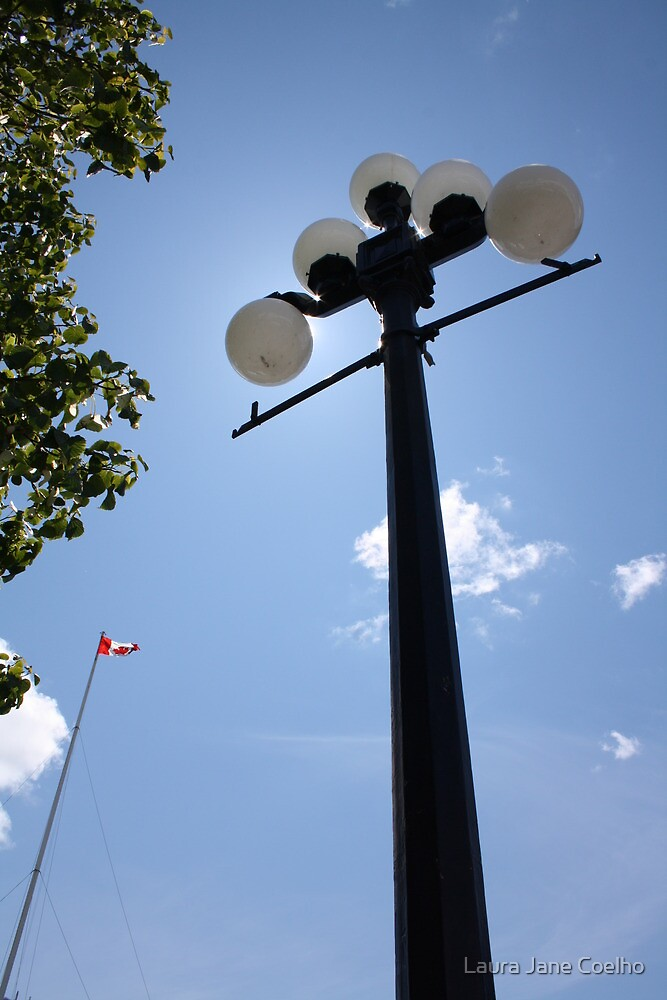 Lamp Pole by Laura Jane Coelho