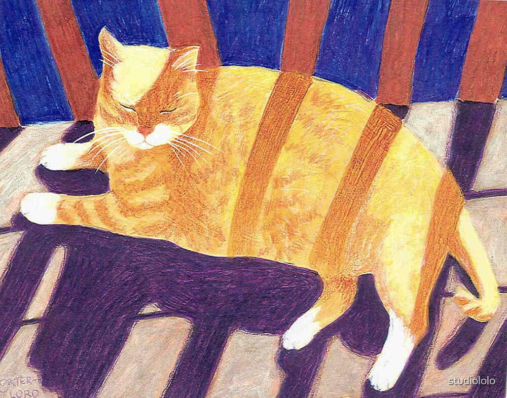 Sunny Stripes by studiololo