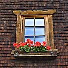 Wooden Window with Geraniums. by Lee d'Entremont