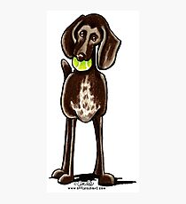 German Shorthaired Pointer Playtime Photographic Print