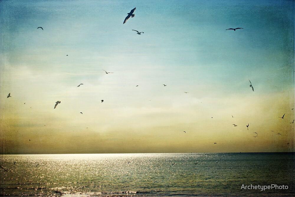 The Beach by ArchetypePhoto