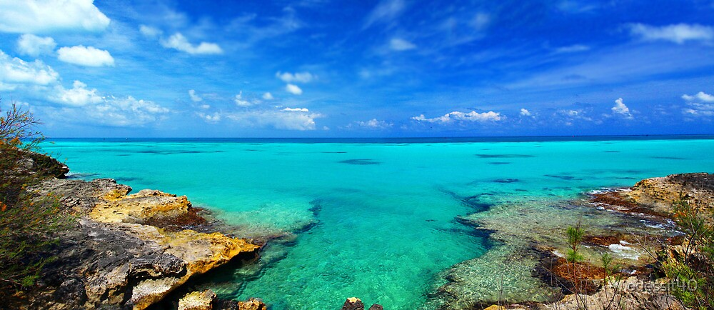 Bermudian Panorama by odessit40