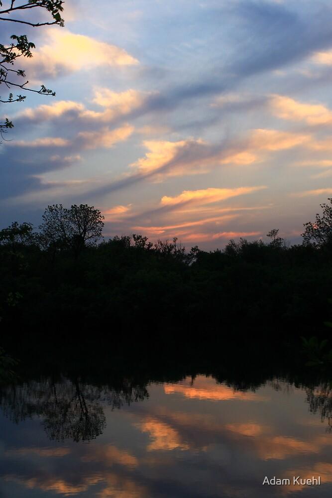 Hidden Mirror Lake, Lisle, IL by Adam Kuehl