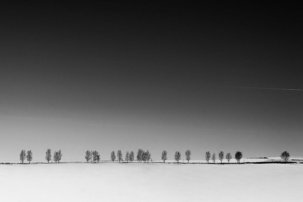 Minimal (12) by StefaniaC